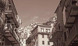 意大利 Cinque terre Manarola 在被定调子的乌贼属 减速火箭的样式 库存图片