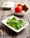 意大利caprese,无盐干酪,蕃茄,蓬蒿 免版税库存图片