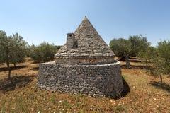 意大利murge橄榄色普利亚结构树trullo 免版税库存照片