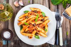 意大利penne面团用西红柿酱 库存照片