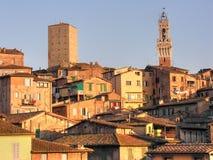 意大利siena托斯卡纳 免版税库存照片