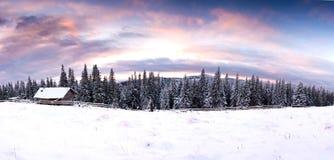 意想不到的与多雪的房子的晚上日落风景剧烈的冷漠的场面 喀尔巴汗,乌克兰,欧洲 免版税库存图片