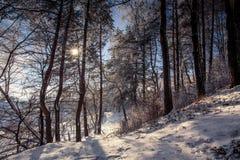 意想不到的冬天背景 免版税库存图片