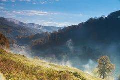意想不到的有雾的天和明亮的剧烈的早晨风景 喀尔巴阡山脉,乌克兰,欧洲 免版税库存照片