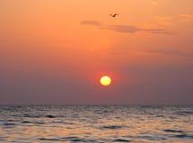 意想不到的橙色海海洋日落天际天空照片 库存照片