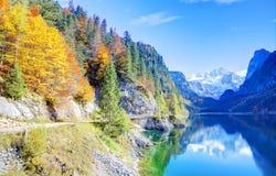 意想不到的秋天阳光在山湖Gosausee点燃 免版税库存照片