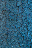 意想不到的背景的色的木纹理 免版税库存照片