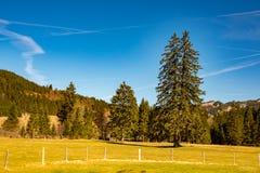 意想不到的草甸和山在春天-德国 库存照片