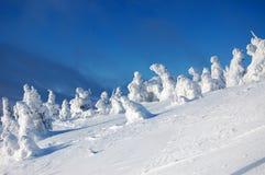 意想不到的雪雕 库存图片