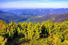 意想不到的晴朗的小山在早晨天空下 草甸的巨大看法有蓝天的 严重的横向 免版税库存照片