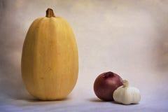 意粉面条南瓜葱和大蒜 免版税库存图片