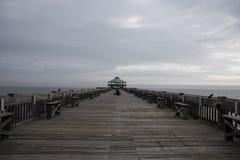 愚蠢海滩码头顶端 免版税库存照片