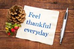 感受感激的每天提示 库存照片