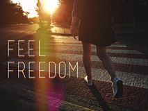 感受自由 免版税库存照片