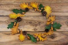 感恩与绿色和黄色橡木叶子、橡子和杉木锥体的门花圈 免版税库存照片