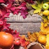 感恩五颜六色的秋天心脏形状叶子 库存图片