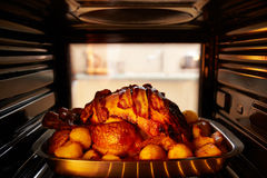 感恩在烤箱里面的土耳其烧烤 免版税库存图片