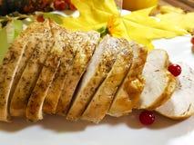 感恩天土耳其片断烤了蔓越桔开胃菜 图库摄影