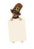 感恩拿着空白的标志的小狗 库存照片