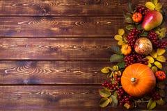 感恩框架用橙色南瓜,秋天野玫瑰果叶子、苹果、梨和荚莲属的植物莓果在土气木背景, 库存图片