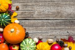 感恩秋天秋天背景用被收获的南瓜、苹果、坚果和槭树叶子 免版税库存照片