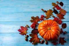 感恩背景用在蓝色木桌上的成熟南瓜 库存图片