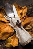 感恩膳食设置 季节性桌设置 感恩秋天与利器和秋叶的餐位餐具 库存照片