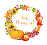 感恩花圈 果子,菜-南瓜,苹果,葡萄,离开 水彩 库存图片