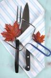 感恩雕刻器物的烘烤火鸡设置了与淡蓝的条纹围裙-垂直 库存照片