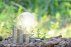 感觉为成功或太阳能o的电灯泡和堆硬币 免版税库存照片