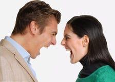 愤怒夫妇。 免版税库存图片
