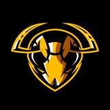 愤怒的在黑背景隔绝的大黄蜂头运动俱乐部传染媒介商标概念 图库摄影
