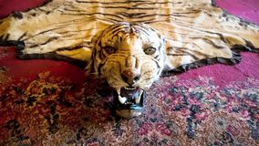 愤怒的地毯 库存图片
