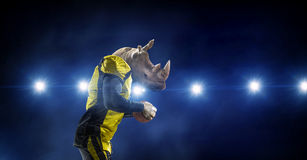 愤怒的犀牛队 混合画法 图库摄影
