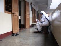 慈善的真福加尔各答的德肋撒的传教士的姐妹在祷告的 库存图片