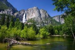 慈悲河在优胜美地国家公园 免版税库存图片