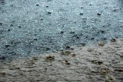 慌张雨 库存图片