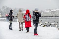 慕尼黑,德国- 2018年2月17日:有拍在雪风暴的红色外套的夫人照片 免版税库存照片