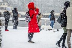 慕尼黑,德国- 2018年2月17日:有拍在雪风暴的红色外套的夫人照片 库存照片