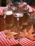 慕尼黑啤酒节 免版税图库摄影
