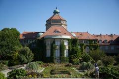 慕尼黑植物园在夏天 免版税库存照片