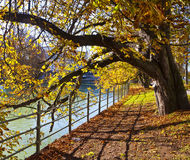 慕尼黑,伊萨尔河河步行在秋天时间的市中心 免版税库存照片