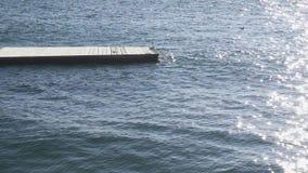 慢动作一个木码头在对此的水中海鸥 影视素材