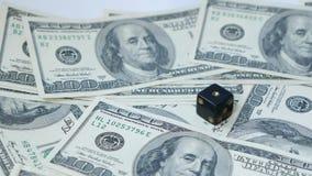 慢动作两黑模子,胡扯,投掷在美元背景, 赌博的概念 股票录像