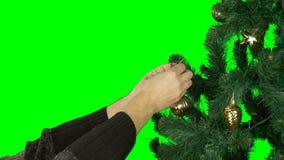 慢动作关闭 阿尔法通道透明背景 供以人员手hange金黄球绿化圣诞节分支  股票视频