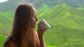 慢动作射击了一个少妇在一个咖啡馆有看法坐高地茶大阳台和饮用的茶 股票录像