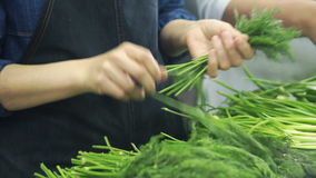 慢动作烹饪器材在餐馆采了莳萝在工业厨房里 影视素材