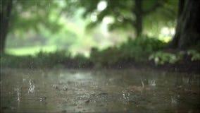 慢动作的惊人的平稳的令人满意的关闭射击了暴雨下跌在路面沥青混凝土路的雨下落 股票录像