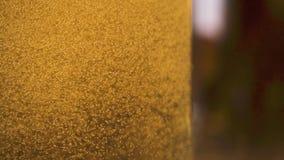 慢动作金黄泡影在饮料特写镜头上升  影视素材