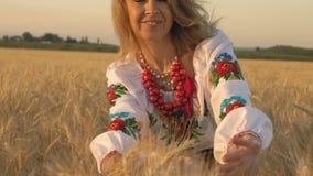 慢动作,特写镜头,全国服装的美丽的妇女握在生长在领域的麦子麦子的手 股票视频